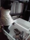 200810keitai_003