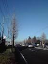 200812keitai_027