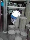 20095keitai_051