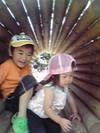 20098keitai_123