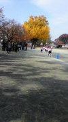 201011keitai_303